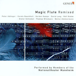 Cd magic flute remixed